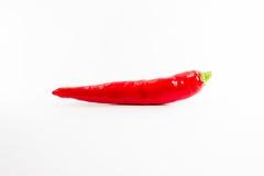 Rétrécissement d'un rouge ardent de poivre de /poivron sur un fond blanc Photos libres de droits