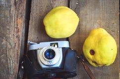 Rétro appareil-photo Photos libres de droits