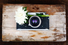 Rétro appareil-photo et fleur Photo libre de droits