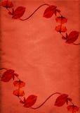 Rétro cadre rouge de fleur Photo libre de droits