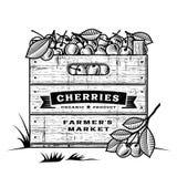 Rétro caisse de cerises noires et blanches illustration stock