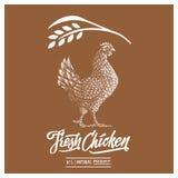 Rétro calibre dénommé de conception et texte calligraphique avec graver l'art de poulet illustration de vecteur
