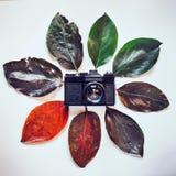 Rétro caméra de film entourée par les feuilles d'automne colorées sur le blanc photos stock