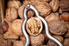 Rétro casse-noix avec la noix criquée Photos stock