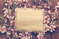 Rétro fond avec les fleurs roses de branches Photos stock
