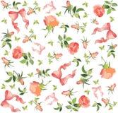 Rétro fond floral. Rose, proue. Image stock