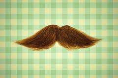 Rétro image dénommée d'une moustache devant le papier peint vert Images libres de droits