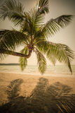 Rétro image de style de plage tropicale d'île Photos libres de droits