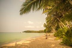 Rétro image de style de plage tropicale d'île Images stock