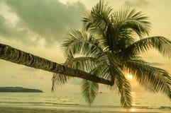 Rétro image de style de plage tropicale d'île Photo libre de droits