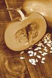 Rétro image de thanksgiving avec le potiron et les graines Photos stock