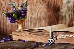Rétro livre sur la clé en bois de table Images stock