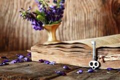 Rétro livre sur la clé en bois de table Images libres de droits