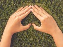 Rétro main de femme dans la forme du coeur sur le fond d'herbe verte Images libres de droits