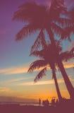 Rétro partie de plage sous des palmiers Image libre de droits
