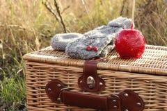 Rétro picnic Photographie stock