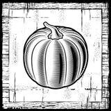 Rétro potiron noir et blanc Photos stock