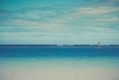 Rétro scène tropicale filtrée d'océan avec Paddleboard et avion photographie stock libre de droits
