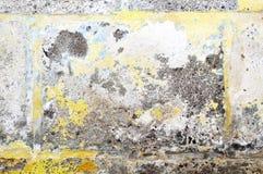 Rétro texture de mur de brique pour votre fond Image stock