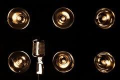 rétro type de microphone Photographie stock