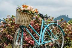 Rétro vieux de bicyclette Photos libres de droits