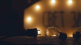Rétros ampoules incandescentes et prise Rétro guirlande électrique Images stock