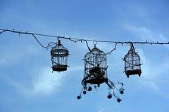 Rétros cages à oiseaux, décoration Images libres de droits