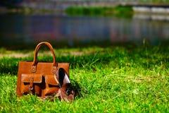 Rétros chaussures brunes et sac en cuir d'homme dans l'herbe colorée lumineuse d'été Images stock