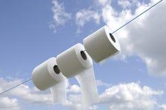 Réutilisation du papier hygiénique Photo libre de droits
