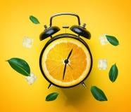 Réveil des feuilles oranges de vert de fruit et du glaçon pilotant Aro illustration stock
