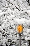 Réverbère en jour neigeux de l'hiver photos libres de droits