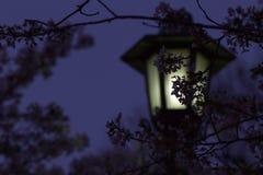 Réverbère sombre au Japon images stock