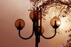 Réverbères dans le coucher du soleil Images libres de droits