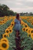 Rêvant la jeune femme dans la robe bleue marchant loin dans un domaine des tournesols à l'été, vue de son dos Regard au côté comp image libre de droits