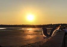 rêve de coucher du soleil de nature photographie stock