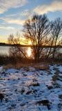 Rêve de janvier du soleil d'hiver Images libres de droits