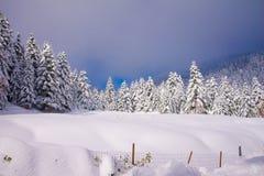 Rêve de l'hiver photo libre de droits