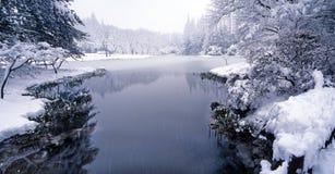 Rêve de neige Image stock