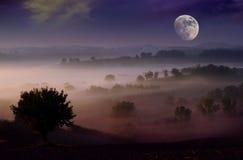 Rêve de nuit photographie stock