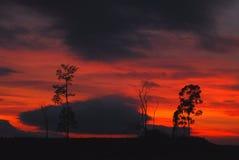 rêve rouge Photographie stock libre de droits