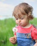 Rêves d'été Photographie stock