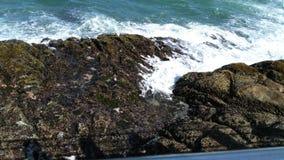 Rêves d'océan Image libre de droits