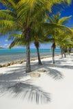Rêves de plage Image libre de droits