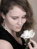 Rêves romantiques Images stock