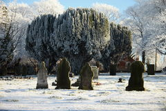 Rêves silencieux de l'hiver 1912 Photo stock