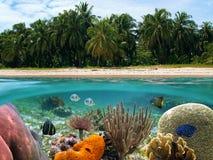 Rêves tropicaux Photos libres de droits