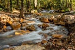 Río áspero de la montaña con los flujos blancos de la espuma entre las rocas y los árboles fotos de archivo