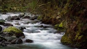 Río último Autumn After Rain de Quilcene imagenes de archivo