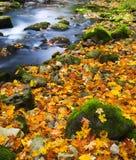 Río Imagen de archivo