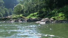 Río almacen de metraje de vídeo